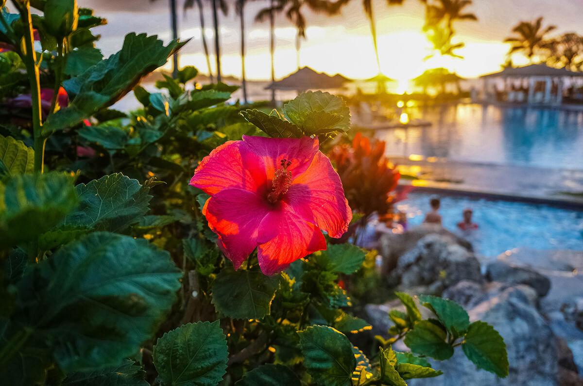 ハワイ旅行に便利な持ち物